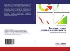 Экономическое измерение результата kitap kapağı