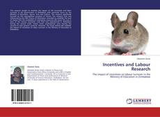 Bookcover of Incentives and Labour Research