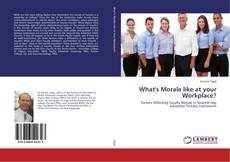 Bookcover of What's Morale like at your Workplace?