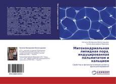 Обложка Митохондриальная липидная пора, индуцированная пальмитатом и кальцием