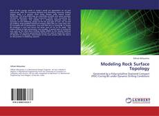 Bookcover of Modeling Rock Surface Topology