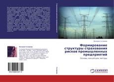 Bookcover of Формирование структуры страхования рисков промышленных предприятий
