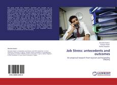 Capa do livro de Job Stress: antecedents and outcomes