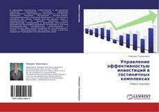 Capa do livro de Управление эффективностью инвестиций в гостиничных комплексах