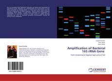 Обложка Amplification of Bacterial 16S rRNA Gene