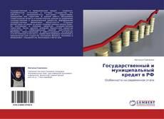 Государственный и муниципальный кредит в РФ kitap kapağı