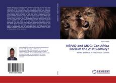 Portada del libro de NEPAD and MDG: Can Africa Reclaim the 21st Century?