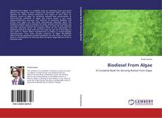 Bookcover of Biodiesel From Algae
