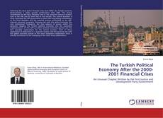 Bookcover of The Turkish Political Economy After the 2000-2001 Financial Crises