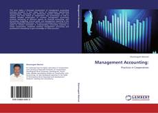 Buchcover von Management Accounting: