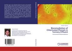 Bookcover of Bioremediation of Chlorinated Phenols in Tannery Effluent