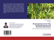 Borítókép a  Biocomposites from Poly Hydroxybutyrate and Bamboo Microfibrils - hoz