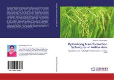 Bookcover of Optimizing transformation techniques  in indica rices