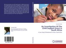 Bookcover of An Investigation Of The Child Support Grant in South Africa