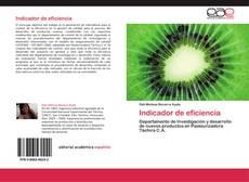 Indicador de eficiencia kitap kapağı