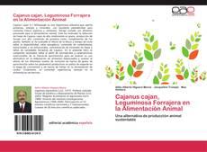 Copertina di Cajanus cajan, Leguminosa  Forrajera en la Alimentación Animal