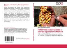 Bookcover of Reformas estructurales y trabajo agrícola en México