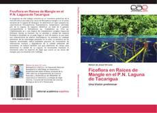 Ficoflora en Raíces de Mangle en el P.N. Laguna de Tacarigua kitap kapağı