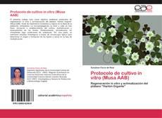 Protocolo de cultivo in vitro (Musa AAB)的封面