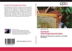 Copertina di Campos Interorganizacionales
