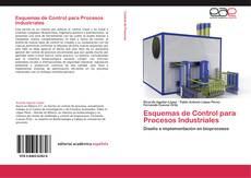 Esquemas de Control para Procesos Industriales的封面