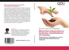 Portada del libro de Micorrizas arbusculares y bacterias solubilizadoras de fosfatos