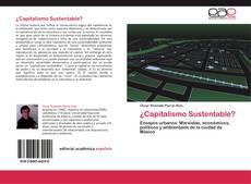 Buchcover von ¿Capitalismo Sustentable?