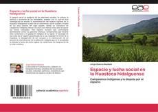 Bookcover of Espacio y lucha social en la Huasteca hidalguense