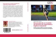 Обложка Desarrollo de un modelo de gestión de seguridad e higiene industrial