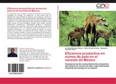 Bookcover of Eficiencia productiva en ovinos de pelo en el noreste de Mexico