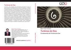 Bookcover of Turbinas de Gas