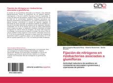 Bookcover of Fijación de nitrógeno en rizobacterias asociadas a glumifloras