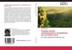 Bookcover of Capital social, participación y ciudadanía en el medio rural