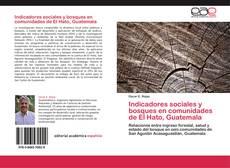 Indicadores sociales y bosques en comunidades de El Hato, Guatemala的封面