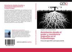 Обложка Asimilación desde el poder y resistencia mapuche en el Futawillimapu