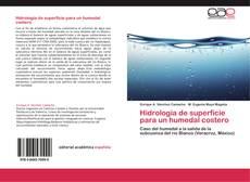 Обложка Hidrología de superficie para un humedal costero