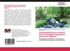 Contaminación en cauces de la Ciudad de Acapulco, Guerrero, México kitap kapağı
