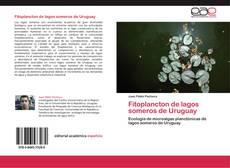 Bookcover of Fitoplancton de lagos someros de Uruguay