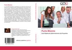 Buchcover von Punto Máximo