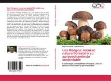 Los Hongos: recurso natural forestal y su aprovechamiento sustentable的封面