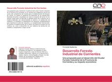 Bookcover of Desarrollo Foresto Industrial de Corrientes