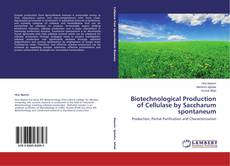 Biotechnological Production of Cellulase by Saccharum spontaneum kitap kapağı