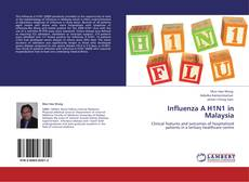 Bookcover of Influenza A H1N1 in Malaysia