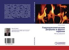 Обложка Гидродинамические разрывы и фронт горения
