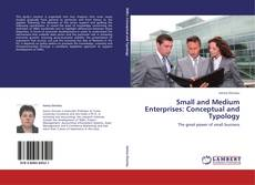 Portada del libro de Small and Medium Enterprises: Conceptual and Typology