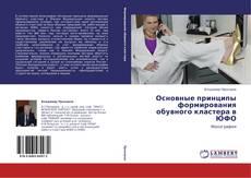 Capa do livro de Основные принципы формирования обувного кластера в ЮФО