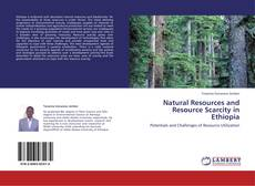 Capa do livro de Natural Resources and  Resource Scarcity in Ethiopia