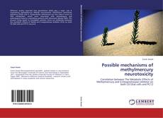 Bookcover of Possible mechanisms of methylmercury neurotoxicity
