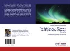 Borítókép a  The Determinants Efficiency and Profitability of Islamic Banks - hoz