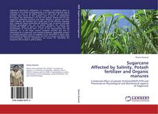 Sugarcane  Affected by Salinity, Potash fertilizer and Organic manures的封面